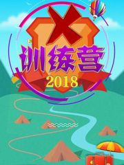 X训练营2018