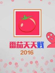 番茄天天贱 2016