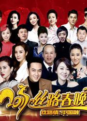 2017陕西卫视春晚