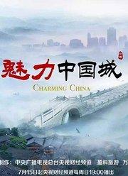 魅力中国城第3季