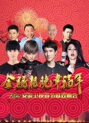 2017安徽卫视春晚