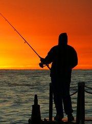 钓鱼实战教学