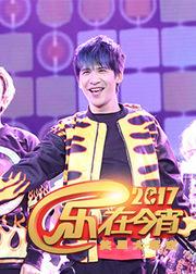 2017鸡年湖北卫视春晚