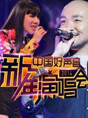 2014浙江卫视跨年演唱会(中国好声音新年演唱会)