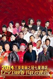 2014辽宁卫视春节晚会
