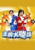 王牌大贱谍2010