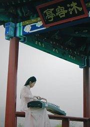 新爱琴乐器:2017古筝演奏合辑