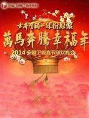 2014安徽卫视春晚