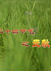 中国气象频道-二十四节气立秋
