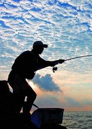 我为钓鱼狂
