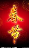 2013蛇年春晚策划7