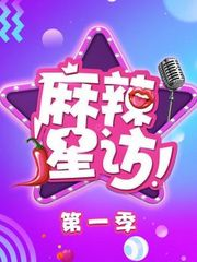麻辣星访第1季