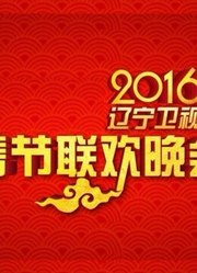 2016辽宁卫视元宵