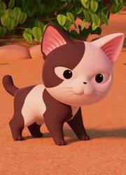 小琪被疼爱惹人嫌 一天不撸猫浑身不舒服
