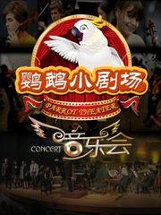 鹦鹉小剧场之音乐会