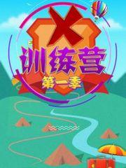 X训练营第1季