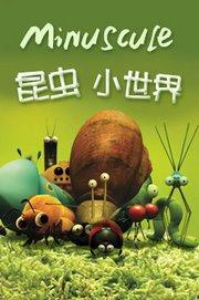 昆虫小世界