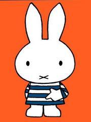 米菲 第3季 颜色,数字和图形
