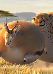 圆滚滚的动物世界