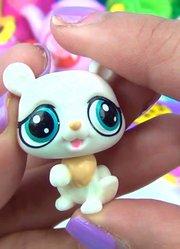 乐享玩聚的玩具视频 第2季