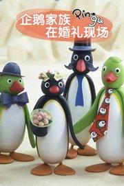 企鹅家族在婚礼现场