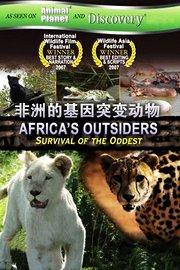 非洲的基因突变动物