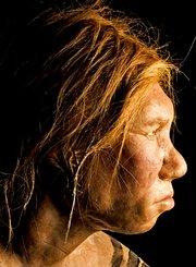 人类进化史诗:崛起