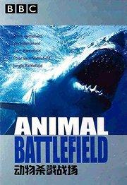 BBC之动物杀戮战场
