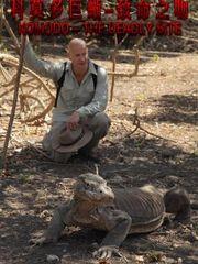 科莫多巨蜥:致命之吻
