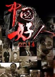 中国好人 2014