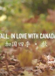 美丽加拿大