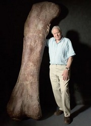 BBC:爱登堡和巨型恐龙