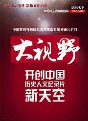 搜狐视频大视野(DSY)