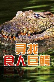 寻找食人巨鳄