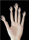 难以置信的手