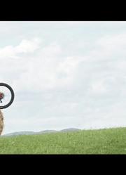 《骑趣之路》  在爱丁堡 轻松快乐地骑行