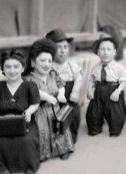 奥斯维辛集中营的七个小矮人