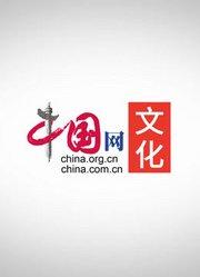 中国网文化纪录片——一看就停不下来的文化史