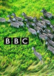 BBC纪录片精选