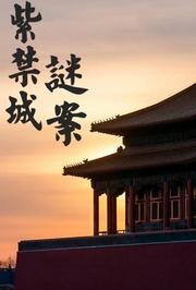 紫禁城千古奇案