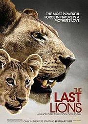 最后的狮群