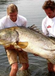 BBC:挑战不可能的钓鱼