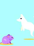 为什么老鼠摔不死