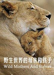 母亲和幼崽的野外生活