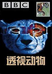 透视动物-生存挣扎