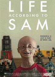 山姆的生活TV版