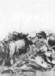 符浩追忆九一三事件:林彪死亡真相揭露