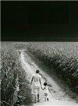 [TEDx]一个摄影师的哲学:照片背后的人与土地
