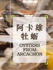 阿卡雄牡蛎