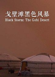 戈壁滩黑色风暴